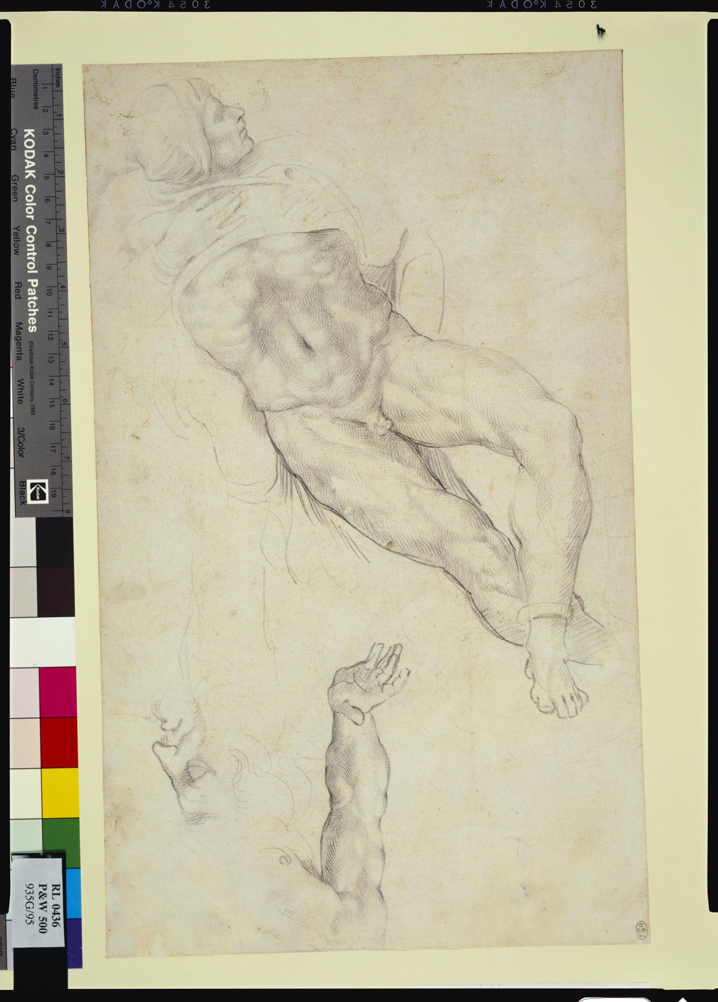 Michelangelo Buonarroti (Caprese 1475-Rome 1564) - [node