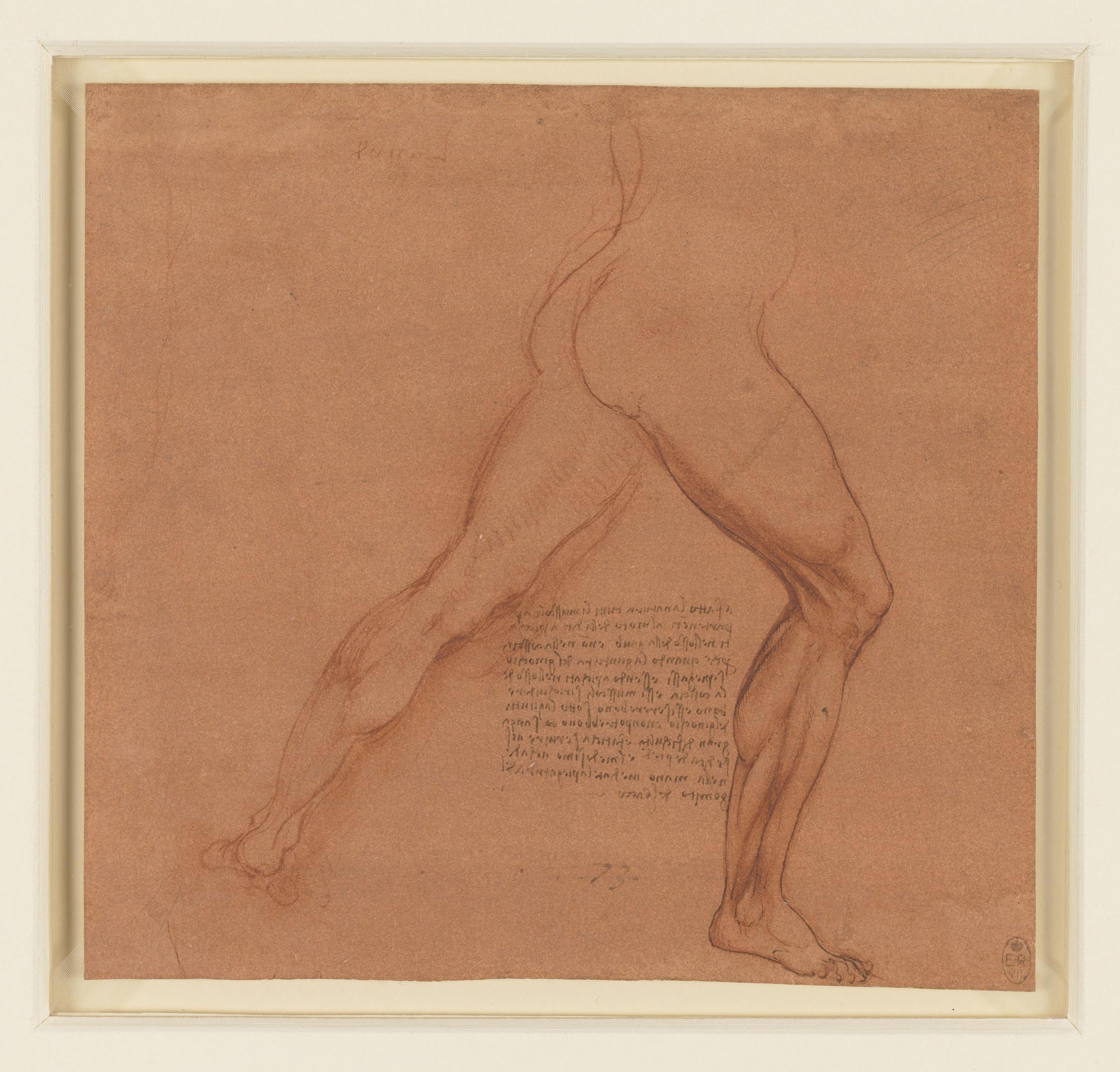 Da Vinci Art