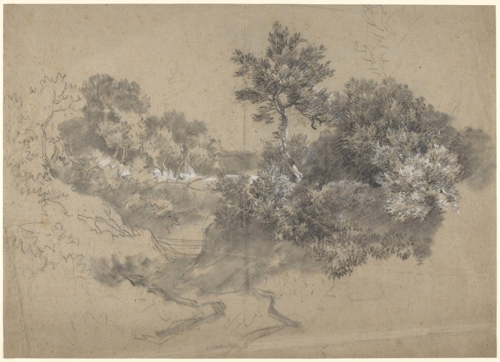A drawing in black and white chalk and stumpof a path with trees and scrubland.Drying fold at centre of sheet. This drawing is one of 25 landscape drawings in the Royal Collection that were firmly attributed to Gainsborough by Lindsay Stainto