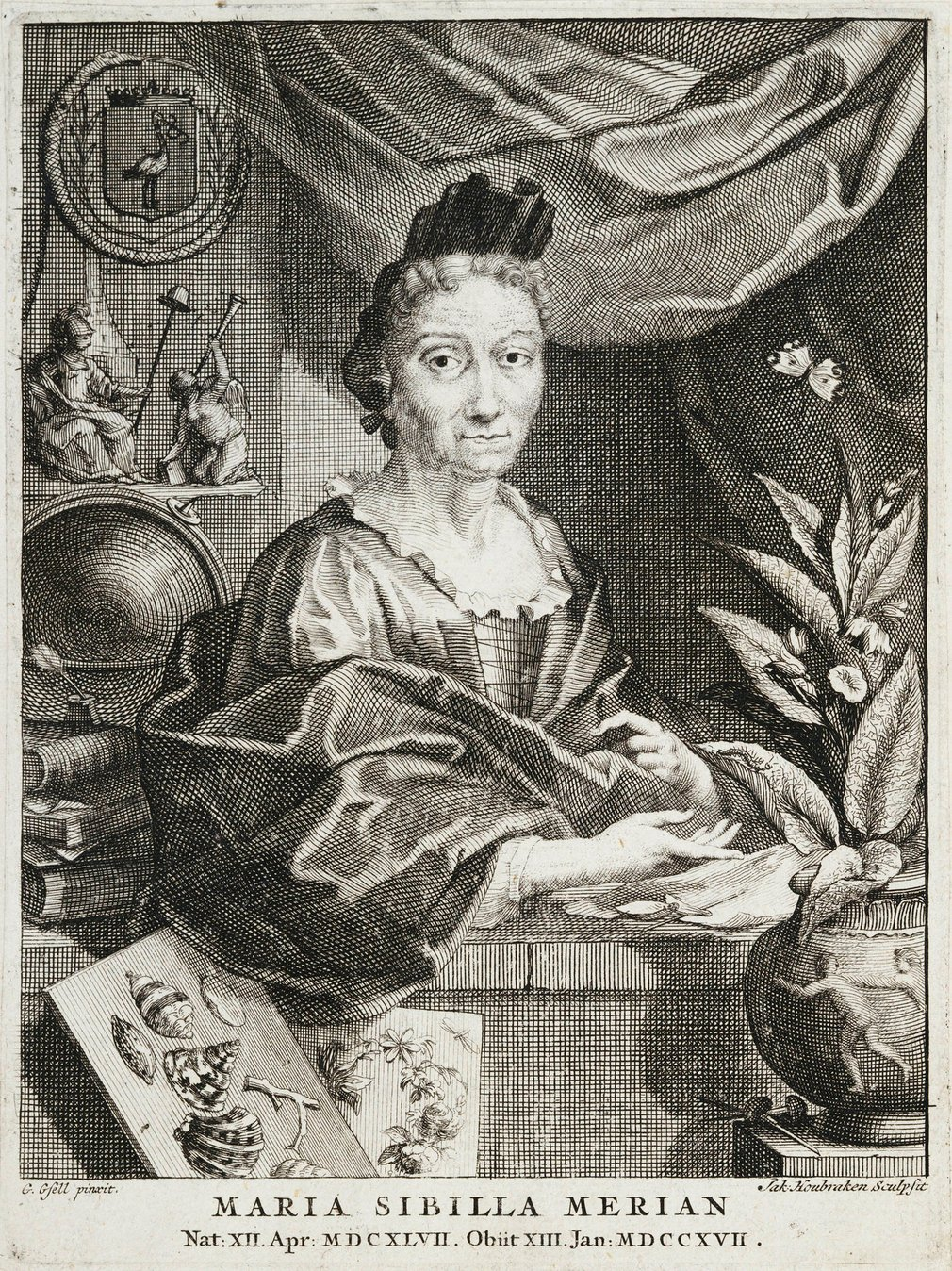 Print depicting half-length portrait of middle-aged lady with headress, facing 3/4 to right. Arms rest on ledge gesturing towards potted plant. To left in front of ledge images of sea shells and flowers. Curtain draped behind.