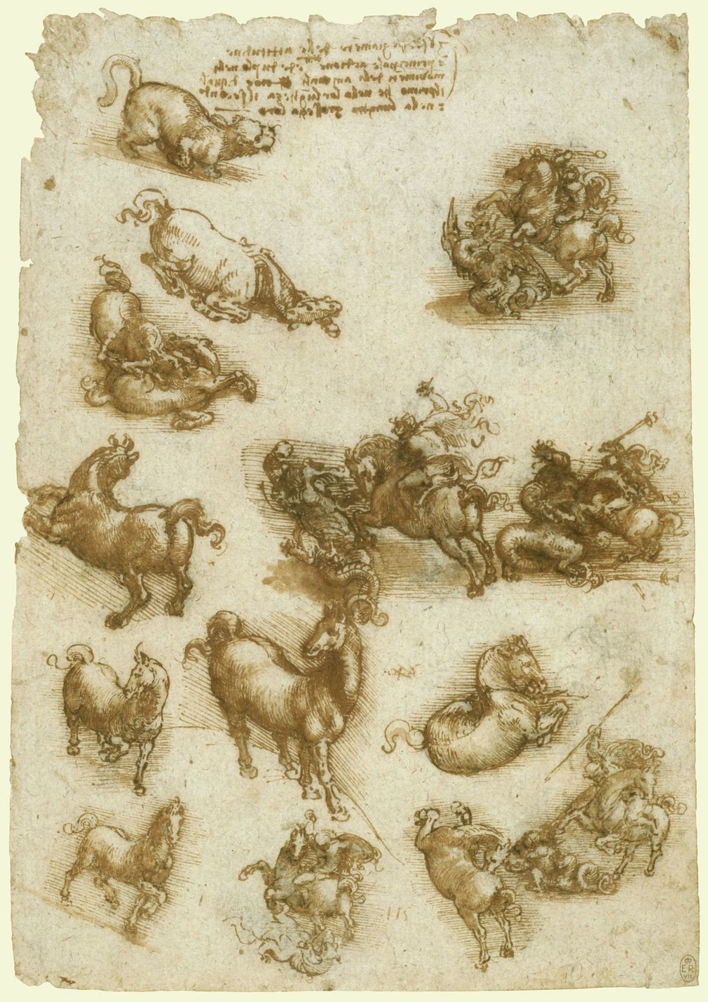 <p>On this sheet Leonardo depicts horses in a variety of extreme attitudes, and five vignettes of St George fighting a dragon serve the same purpose, giving a context to the twisting of the horse away from the monster. The notes on this sheet and on RCIN
