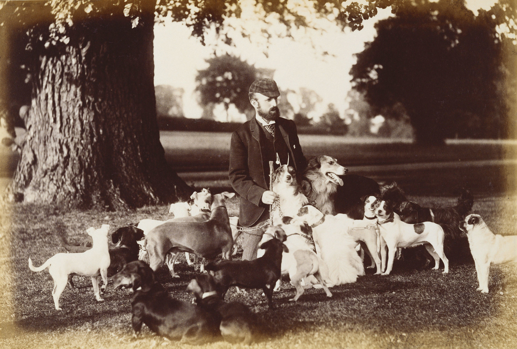 Photograph of Mr Hill, the kennel master, under a tree surrounded by dogs from the Windsor kennels. The group of dogs includes Borzois, pugs, fox terriers, greyhounds and dachshunds.<br /><br />The kennels in the Home Park at Windsor were built in 1840-41