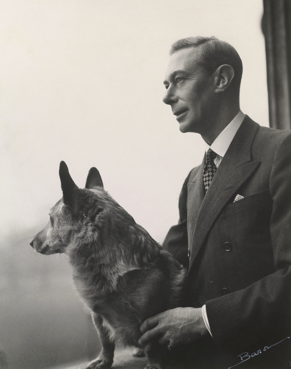 Photograph of King George VI (1895-1952) with a corgi. King George VI is standing and looking out of a window in Buckingham Palace. Captured in profile, he faces left. The dog sits on the windowsill, its head turned away from the camera. This is one o