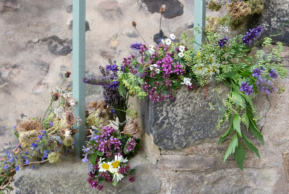 bundles of herbs drying on the steps of Abbey Strand
