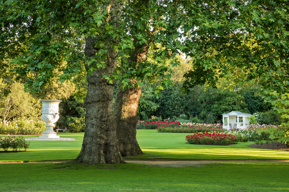 The Waterloo Vase, rose garden and summer house in the Buckingham Palace Garden.