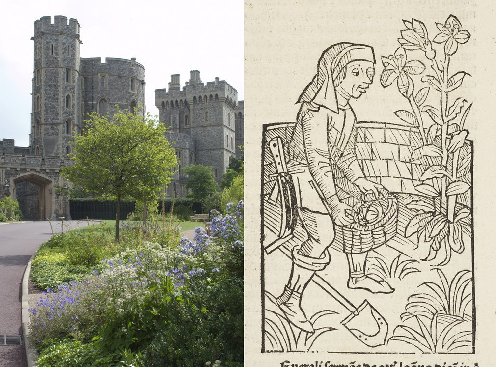 Course / study day: A living history: the gardens of ...