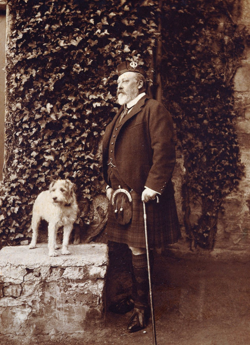 Photograph of King Edward VII (1841-1910) with his fox terrier Caesar. The King is standing facing partly left and is wearing Highland dress. Caesar is standing on a stone ledge beside him to the left. Behind them is an ivy covered wall.<br /><br />Caesar