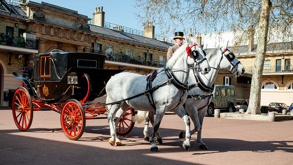 Horses and carriage at the Royal Mews