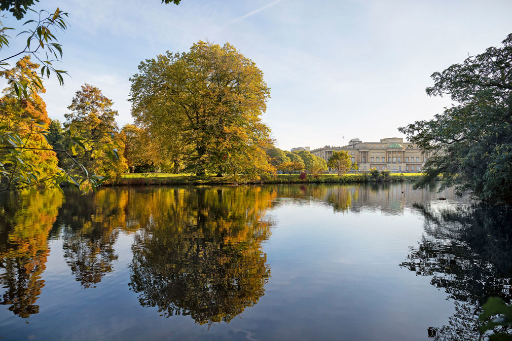 Buckingham Palace viewed from across the garden's lake. Photographer: John Campbell
