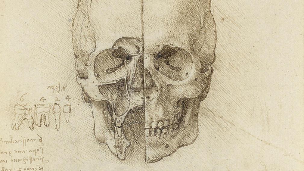Largest exhibition of Leonardo\'s anatomical work reveals a...