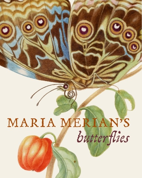 Cover jacket of Maria Merian's Butterflies