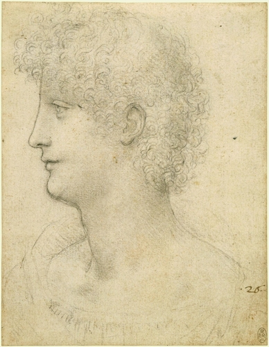 The head of a youth in profile