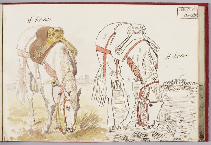 Master: Albert Edward's Teaching Sketch Book (Later Edward VII) 1853-54 Item: A horse