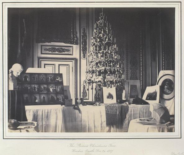 The Queen's Christmas Tree, Windsor Castle