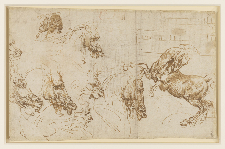 Recto: A rearing horse, and heads of horses, a lion and a man. Verso: Notes and diagrams on astronomy and geometry, and the head of a horse