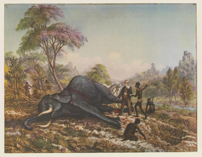 Master: Thomas Baines: his art in Rhodesia Item: Thomas Baines, his art in Rhodesia. Plate V: The discovery of gold