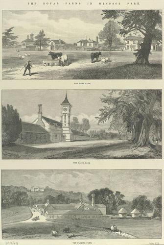 The Royal Farms in Windsor Park: The Home Farm; The Dairy Farm; The Flemish Farm