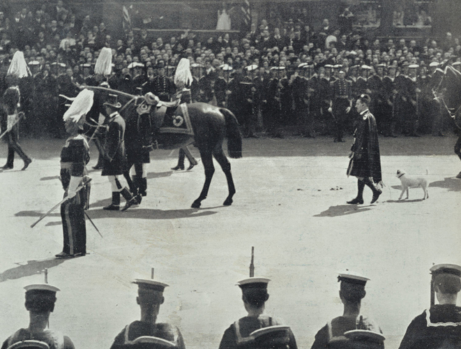 Funeral Procession of King Edward VII, with Caesar and the King's horse