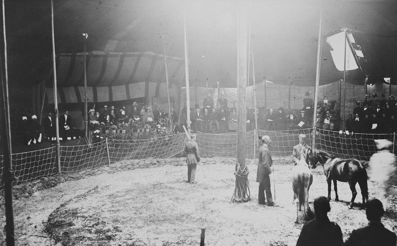 Queen Victoria watching Mr. Ginnett's Circus [Album: Balmoral Vol 4 1882 - 1899]