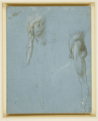 A male nude seen from the back and side