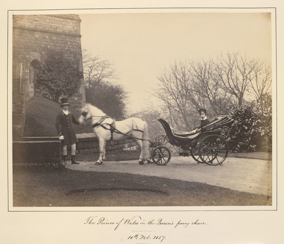 Albert Edward, Prince of Wales, later King Edward VII (1841-1910), in the Queen's pony chair