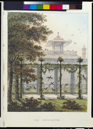 Designs for the Pavilion at Brighton: The Pheasantry