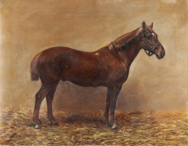 Iron Duke, a Shooting Pony of King Edward VII