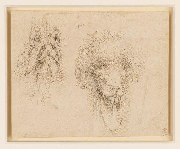 Two heads of grotesque animals
