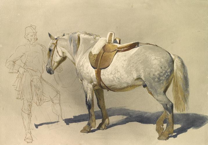 The Queen's pony, Craig Liath