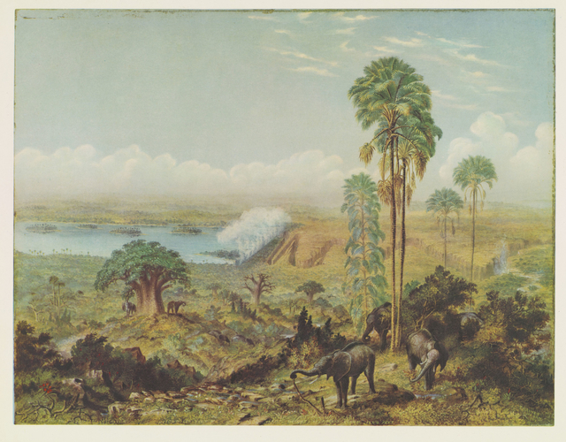 Master: Thomas Baines: his art in Rhodesia Item: Thomas Baines, his art in Rhodesia. Plate I: Bird's eye view of the falls