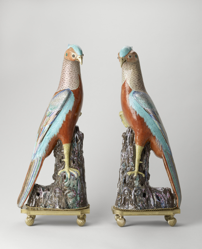 Pair of pheasants