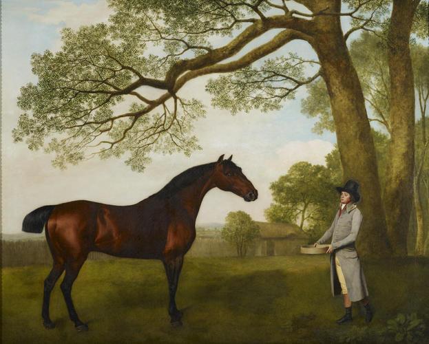 John Gascoigne (d. 1812) with a Bay Horse