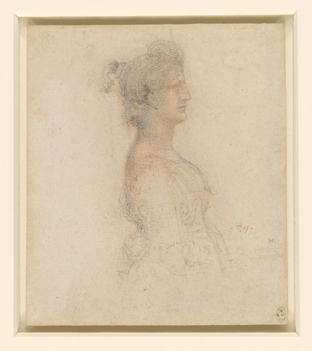 The bust of a masquerader in profile