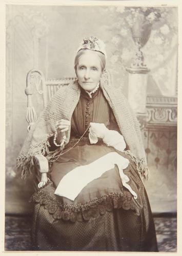 Ann Birkin (b. 1816), Hosiery Embroideress