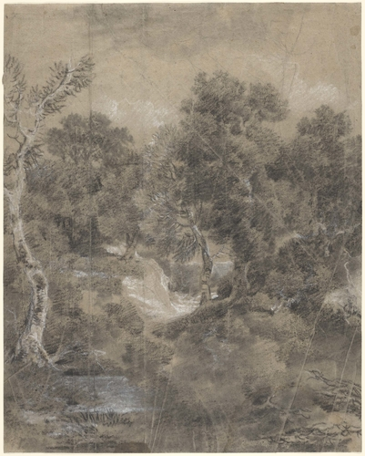 Wooded landscape with a silver birch