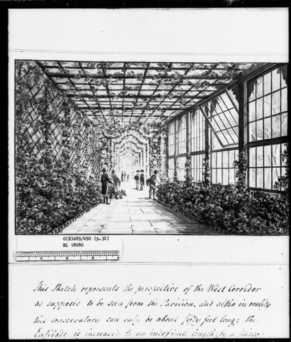 Designs for the Pavilion at Brighton: West Corridor of the Pavilion-Green House