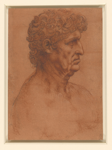 The bust of a man