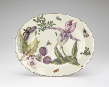 Shaped oval dish with a chocolate coloured rim. The inner bowl decorated with orchid, sliced passion fruit, scattered foliage and insects.Botanical publications also influenced the direction of floral ornament on porcelain in the mid-eighteenth century. T
