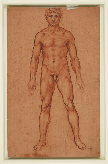A study of a nude man standing facing the spectator, with his legs apart and his arms hanging down at his sides. In his left hand he holds a stick.Melzi's number 61. Leonardo's most ambitious painting was the Battle of Anghiari, a huge mural c