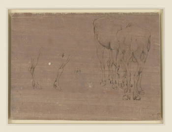 Studiesofhorses grazing, one directly from behind, with its head visible to the left of its legs, and another from in front, its head obscured by the first. To the left a horse is drawn in profile, though only the right legs are inked, and the