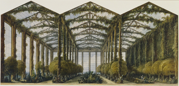 A watercolour design for a garden conservatory at Carlton House, showing how it may look filled with plants. The top of the sheet has been cut to shape. The conservatory was never built.