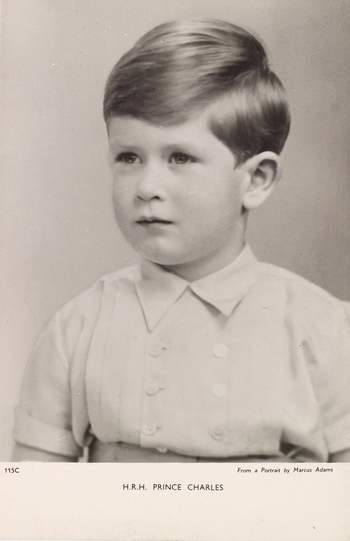 Photograph of Prince Charles in half length, facing three-quarters left