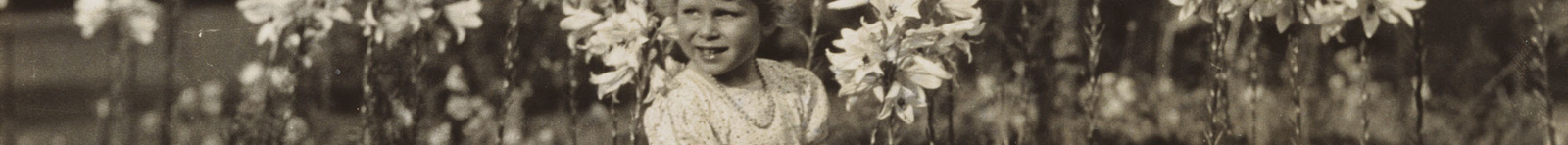 In 1929 Princess Elizabeth was photographed by her father, the future King George VI, standing in front of a group of Madonna lilies, lilium candidum. The photograph was taken at St Paul's Walden Bury, the Hertfordshire home of the Princess's maternal g