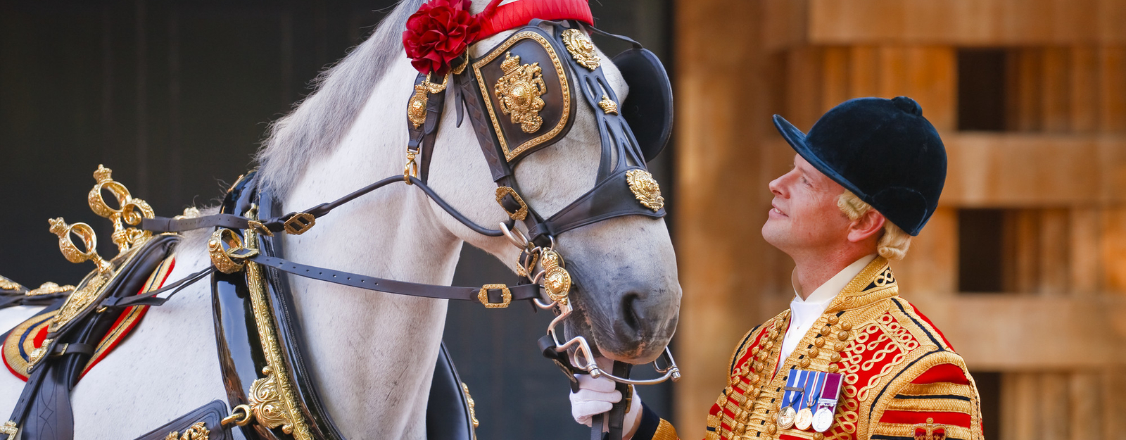 Horse dressed in Royal Mews finery with rider in uniform
