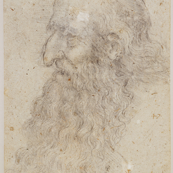 Self portrait of Leonardo da Vinci as an old man
