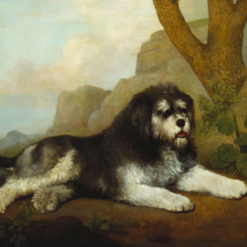 The Royal Collection holds an important group of paintings by George Stubbs; all of them were acquired by George IV when Prince of Wales and all of them (with the exception of OM 1115, 400512) were sent in 1822 from Carlton House to the King's Lodge (la
