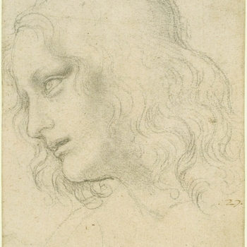 A drawing of the head of a youth, with long wavy hair, bending forward and inclined slightly away from the spectator. He is seen almost in profile to the left, with his lips parted and his eyes raised. Melzi's number 27. Leonardo's greates