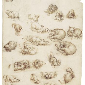 <p>A sheet of more than twenty drawings of cats and lions in a wide variety of positions; lying asleep, sitting, prowling, playing, fighting, and in one case frightened, standing with humped back and fur standing on end; in the lower half, drawn at an odd