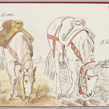 A watercolour showing two studies of a horse. Both studies show the horse standing with its head lowered, eating grass. Corbould's original is shown to the left, inscribed below: Edward H. Corbould The Prince of Wales' copy is shown to the right. Inscrib