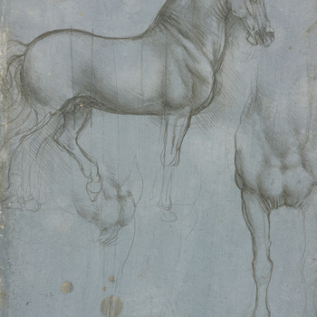 A study of a horse, full length, standing in profile to the right, with vertical lines indicating proportions; a study of the chest and part of the near fore-leg of a horse, and a slight sketch of the same; a study of the chest and off-fore leg of a horse
